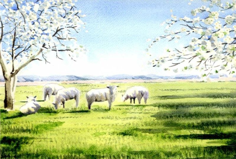 landscape painting with sheep and fields