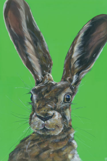 painting of hare