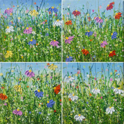 Wild Flower Mini Meadows  - 4 Piece by lucy moore