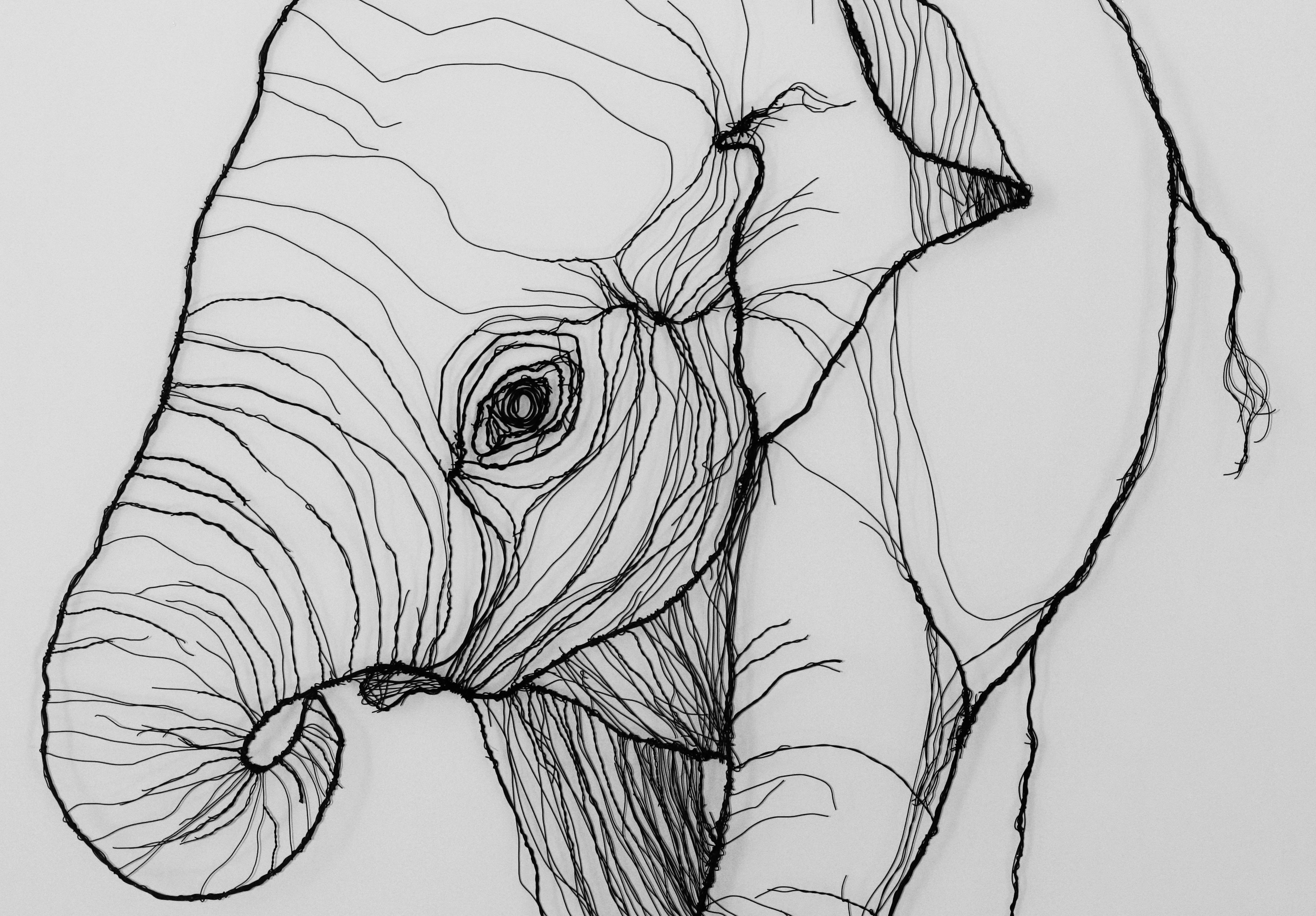 buy original elephant art at rippingham art