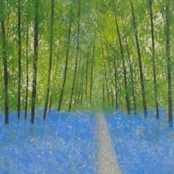 TREES BLUEBELLS WOODS LANDSCAPE JAN RIPPINGHAM