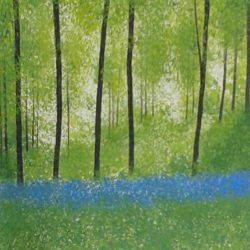 trees bluebells woods landscape hampshire jan rippingham