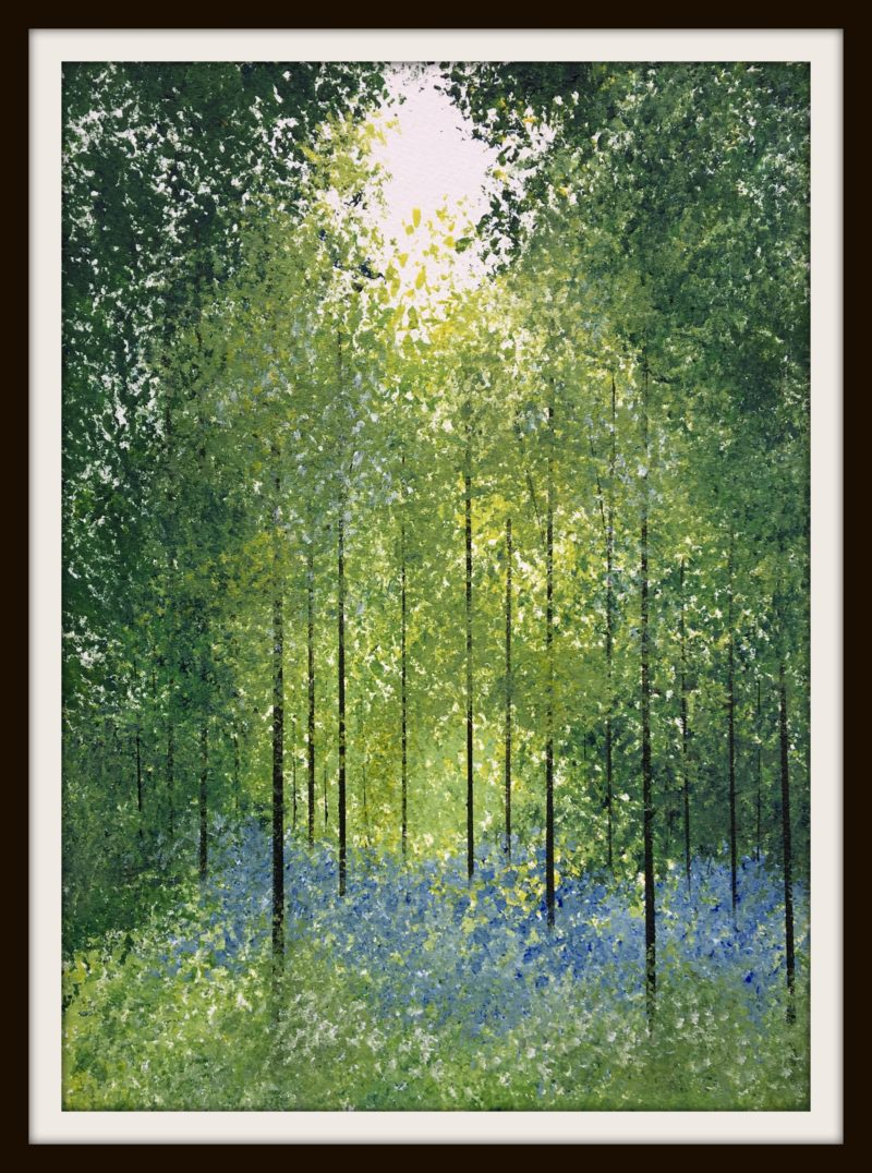 trees and bluebells landscapelondon park jan rippingham