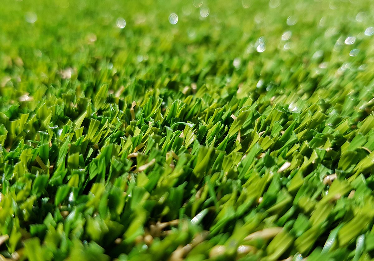 Thistle Artificial Grass: Balmoral / 25mm
