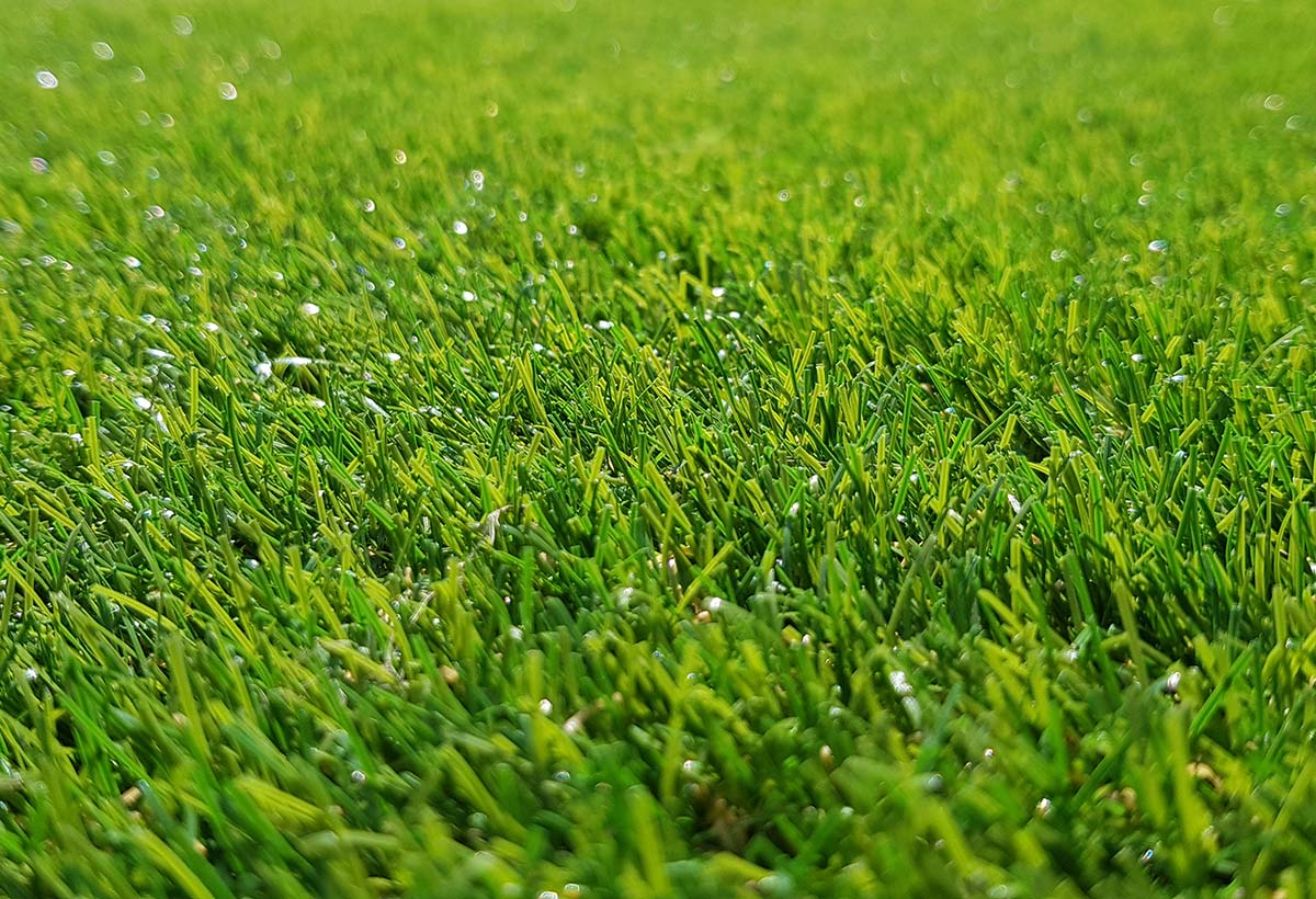 Thistle Artificial Grass: Fyvie / 30mm