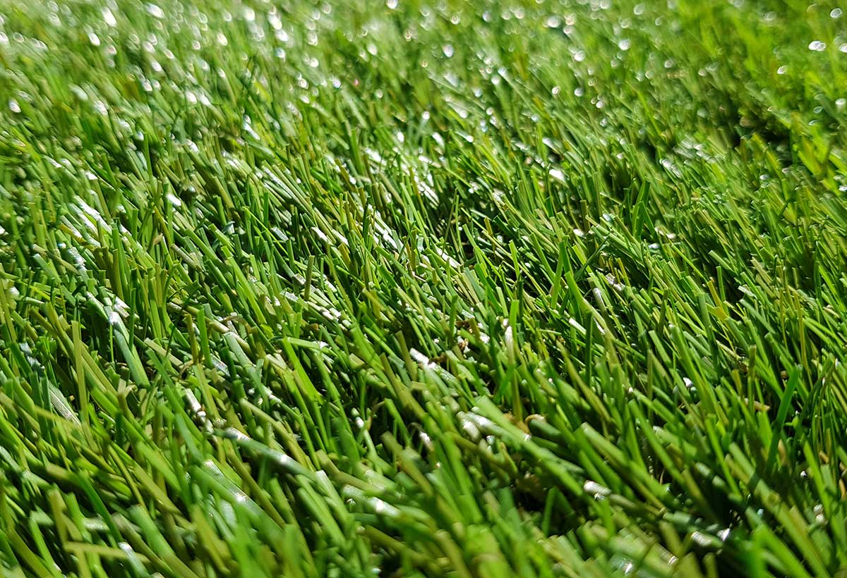 Thistle Artificial Grass: Crathes / 37mm