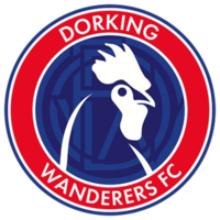 Dorking Wanderers Logo