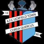 AFC Uckfield Town Logo