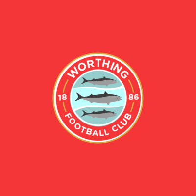 TERMS AND CONDITIONS FOR USE OF THE WORTHING FC WEBSITE