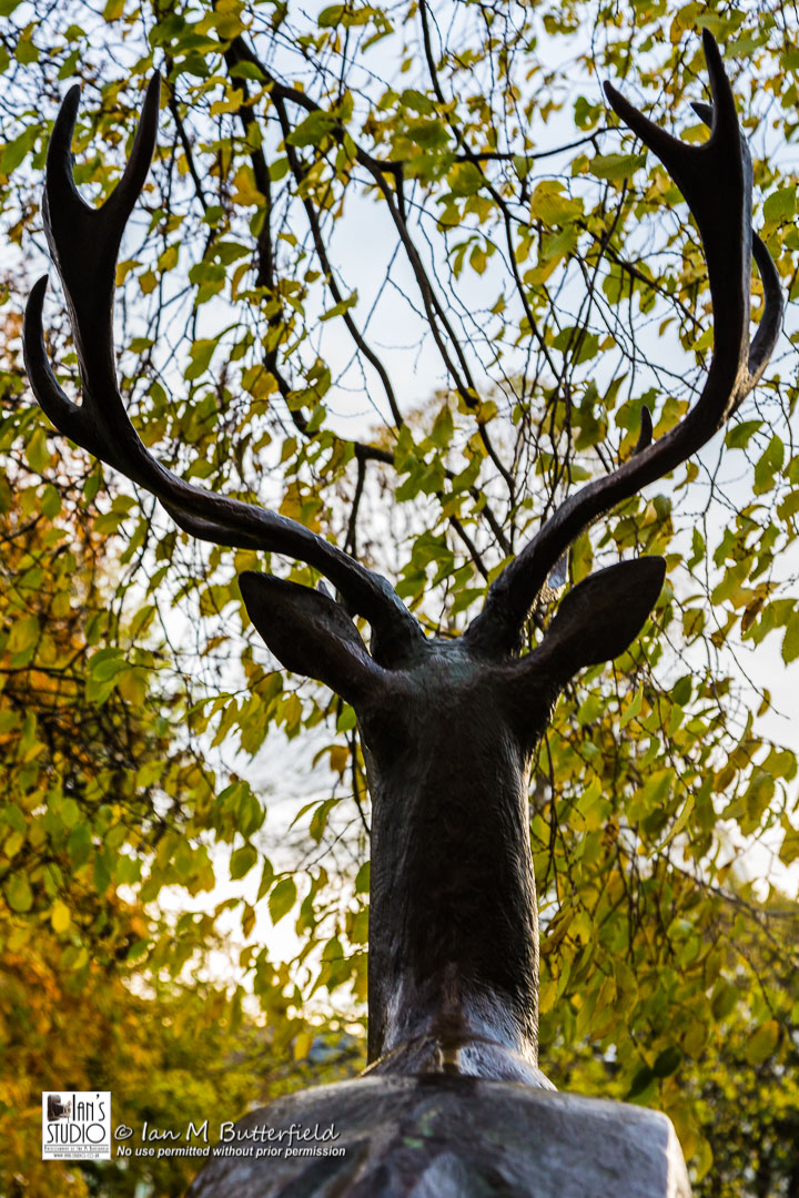 ACADEMY BITE: Autumn #8 – Stag statue