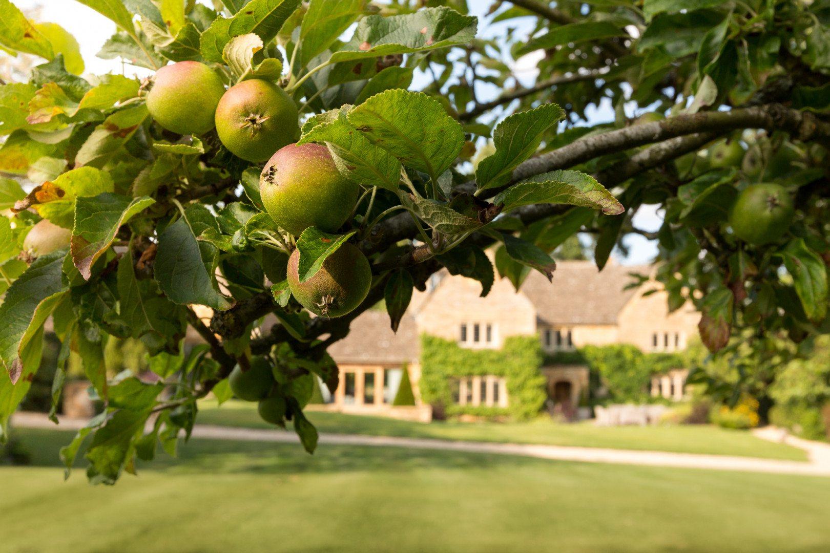 Gardens-England-Luxury-Cotswold-Rentals-UltraVilla