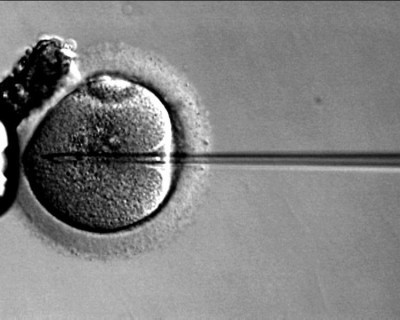 Father whose ex-partner forged his consent to IVF loses damages claim