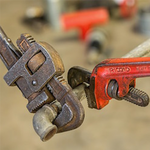 High court upholds will in favour of handyman