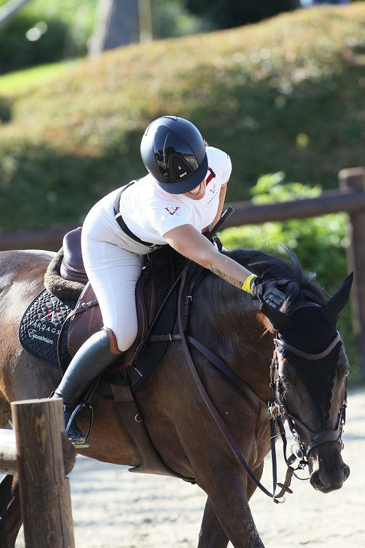 Success in Italy and Vardags Saratoga's 3-day début
