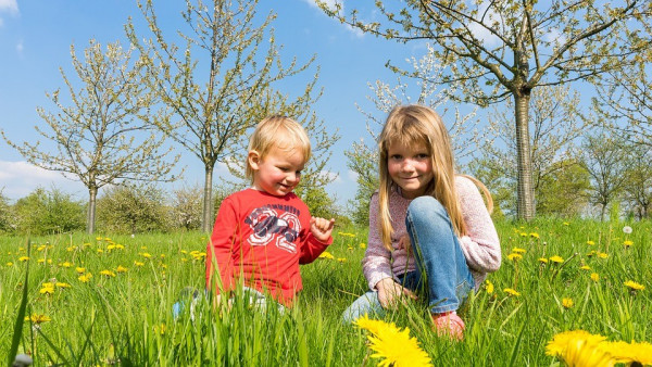 Guide to child maintenance for unmarried parents