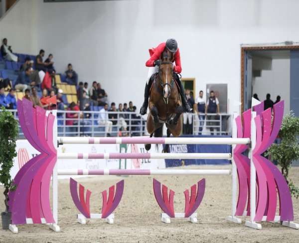 Love at first stride: an interview with Vardags Equestrian's Ahmad Mansour