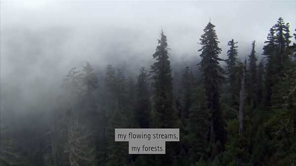 Custom Subtitle Style Example 1