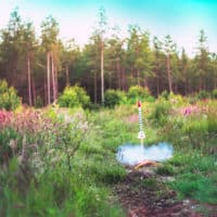 Rocket taking off at Camp Wildfire. A summer weekend break in a forest near London and Kent. An outdoor woodland retreat featuring adventure activities, live music, DJs, parties and camping. Half summer adventure activity camp, half music festival, for adults only.