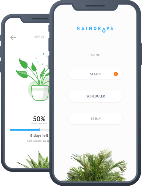 Raindrops greentech startup, Internet of Things, building the user interface, Wolfpack Digital, startup ecosystem, smart flower