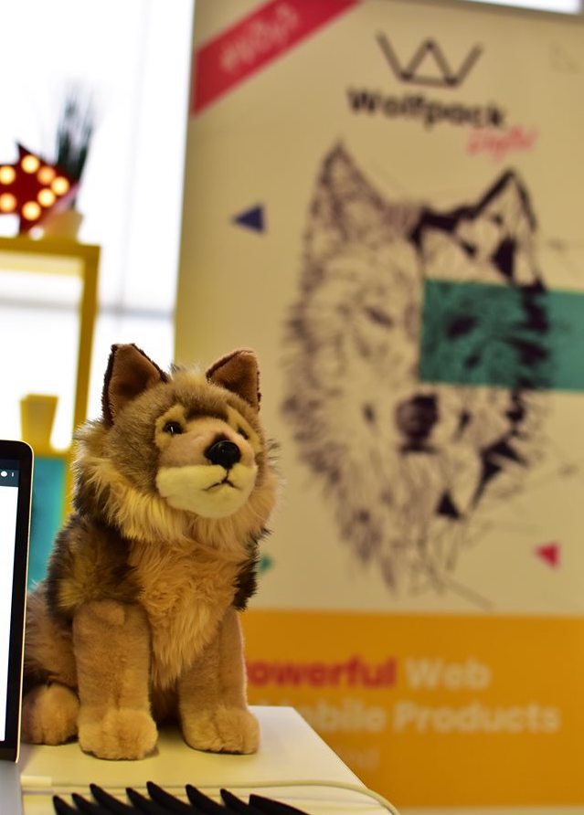 Build your app with Wolfpack Digital, technical progress for spart solutions, web and mobile apps at Techsylvania 2019.