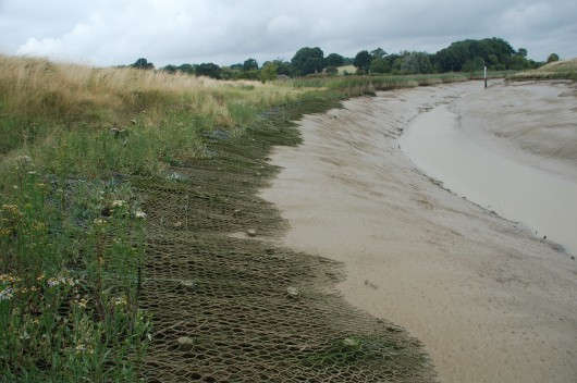 inter-tidal bank stabilisation