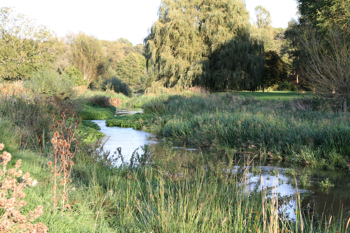 Hampshire avon