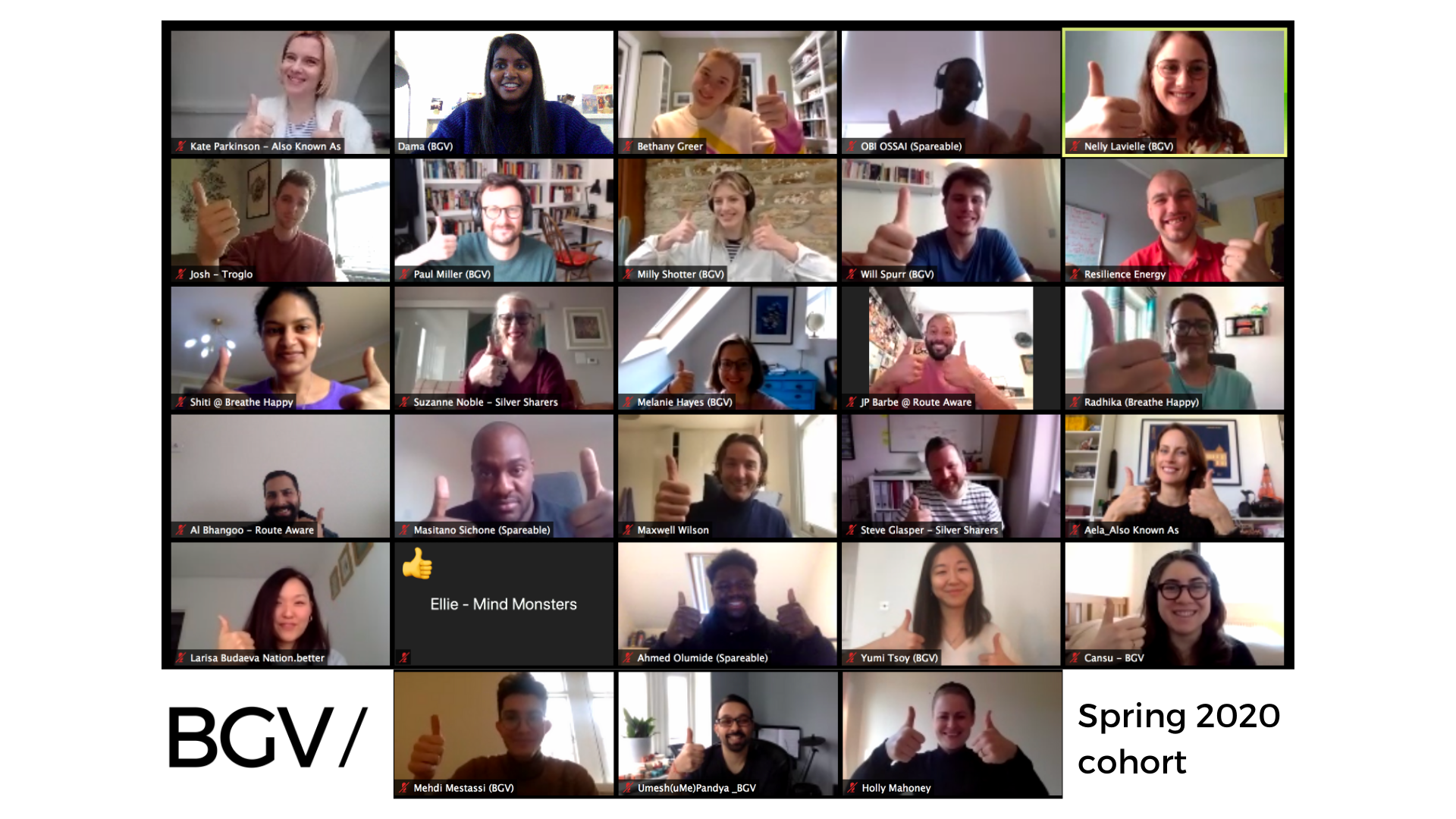 The Spring 2020 teams and BGV Team on their first programme call