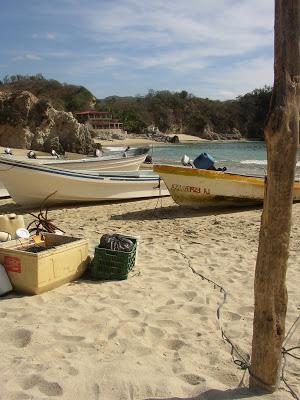 The pacific coast Mexico