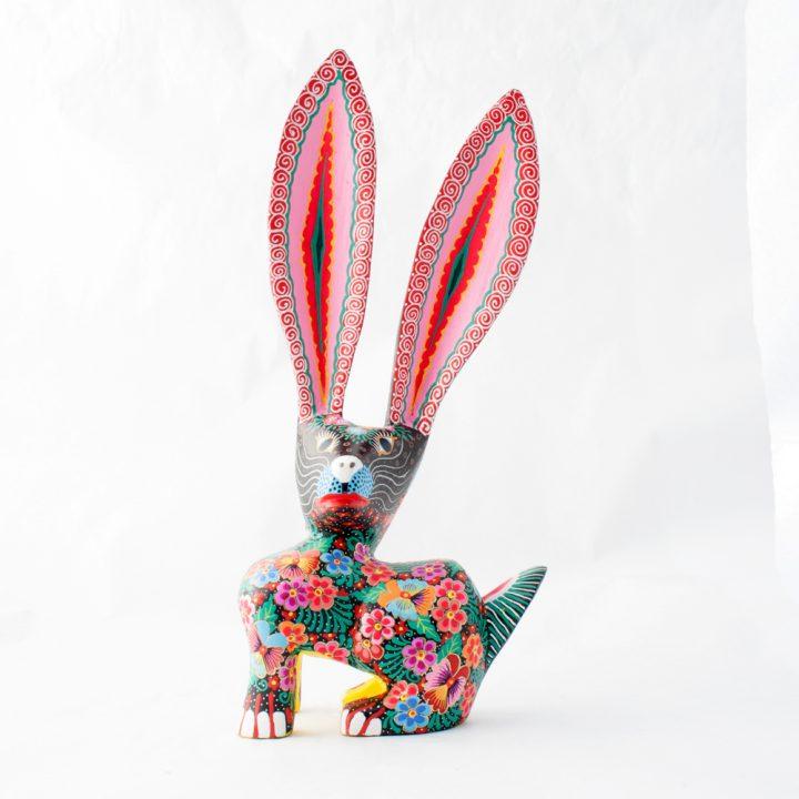Marie Jimenez rabbit