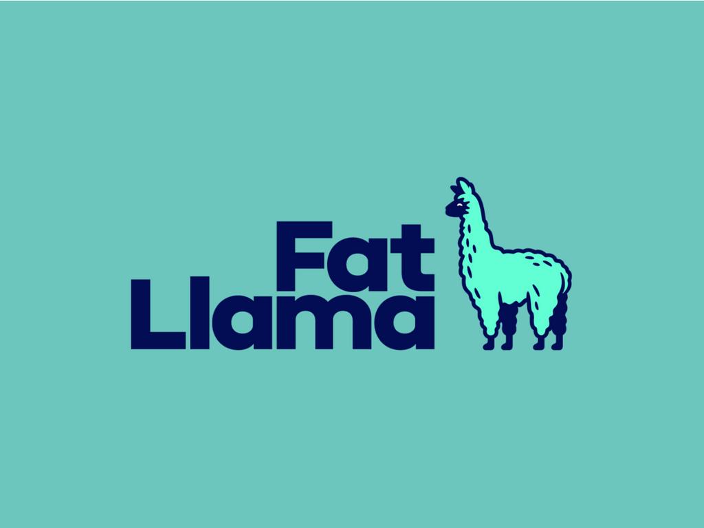 Fat Llama (1)